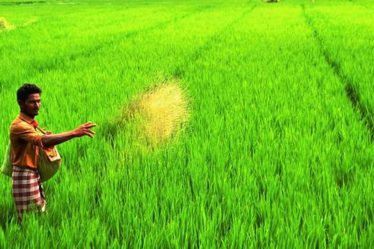 India to let farmers sell produce directly to traders, retailers